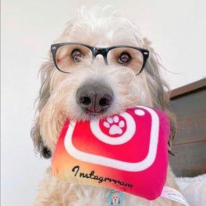 Instagrrram Plush Dog Toy